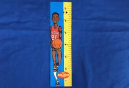 "1969 Topps RARE NBA ""Ruler"" Insert Bob Boozer Chicago Bulls"
