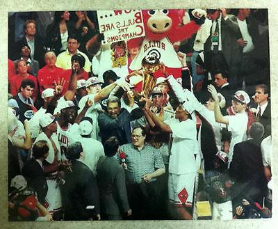 chicago bulls championship photo michael jordan scottie