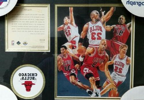 michael jordan chicago bulls item 0223 record