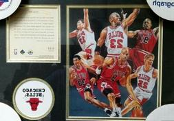 Michael Jordan, Chicago Bulls Item #0223!!! Record Breaking